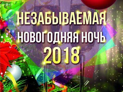 Незабываемая Новогодняя ночь!